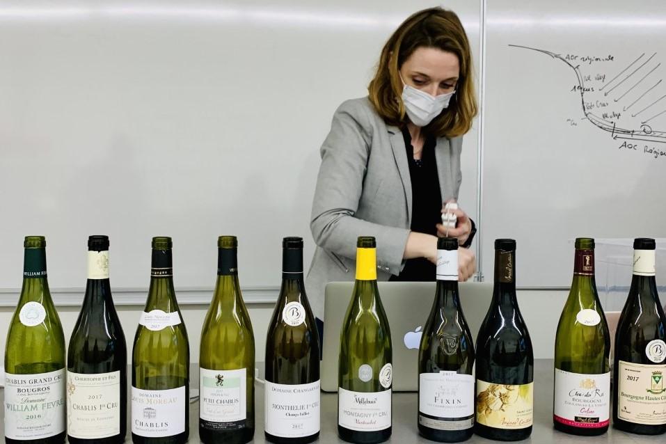 Photo des vins de Bourgogne présentés par Mme Depuis aux étudiants de BTS MHR